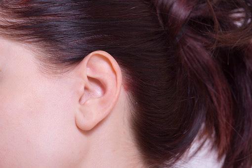内臓機能を正常に働きかけて代謝アップ&食欲抑制する耳つぼ